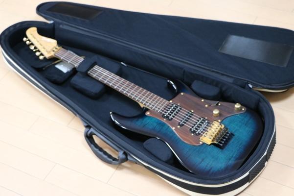 エレキギターのケース内面