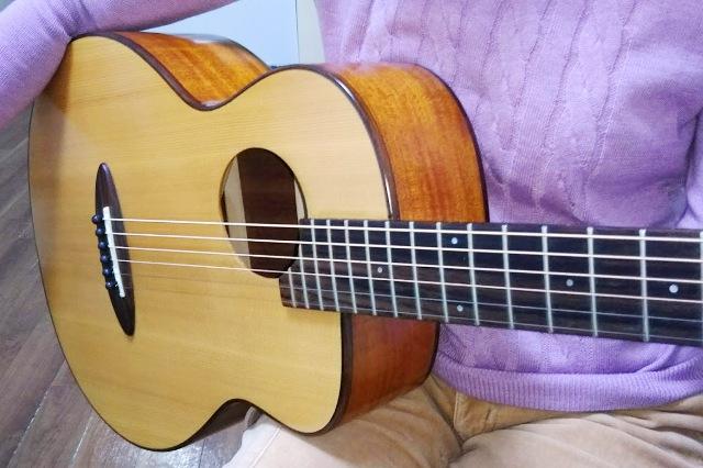 aNueNue Bird Guitar